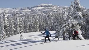 cross ski